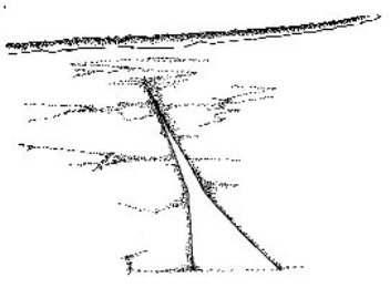 Nazca Lines Geoglyph: Directional Pointer for Flying Alien Astronaut