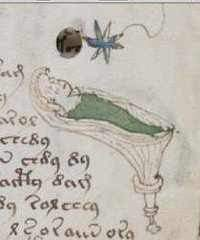 Voynich Manuscript drawing of a rainforest female wrapped in a blanket while sleeping in her tree hut