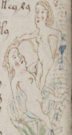 Voynich Manuscript drawing of a Perfecta performing the sacrament of Consolamentum