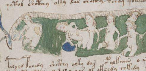 Voynich Manuscript drawing of rainforest women washing themselves with rainwater